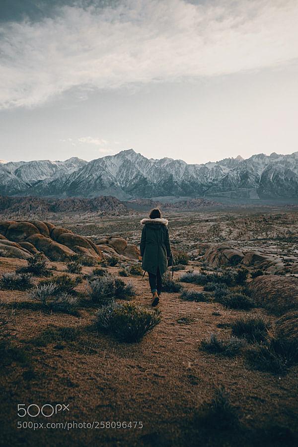 sierra desert stroll