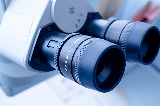 Selective Focus Photographby Black and White White Microscope
