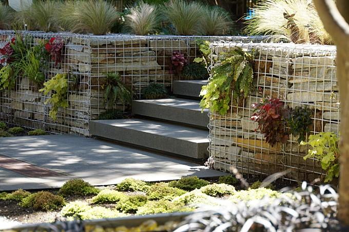 Contemporary Wooded Garden