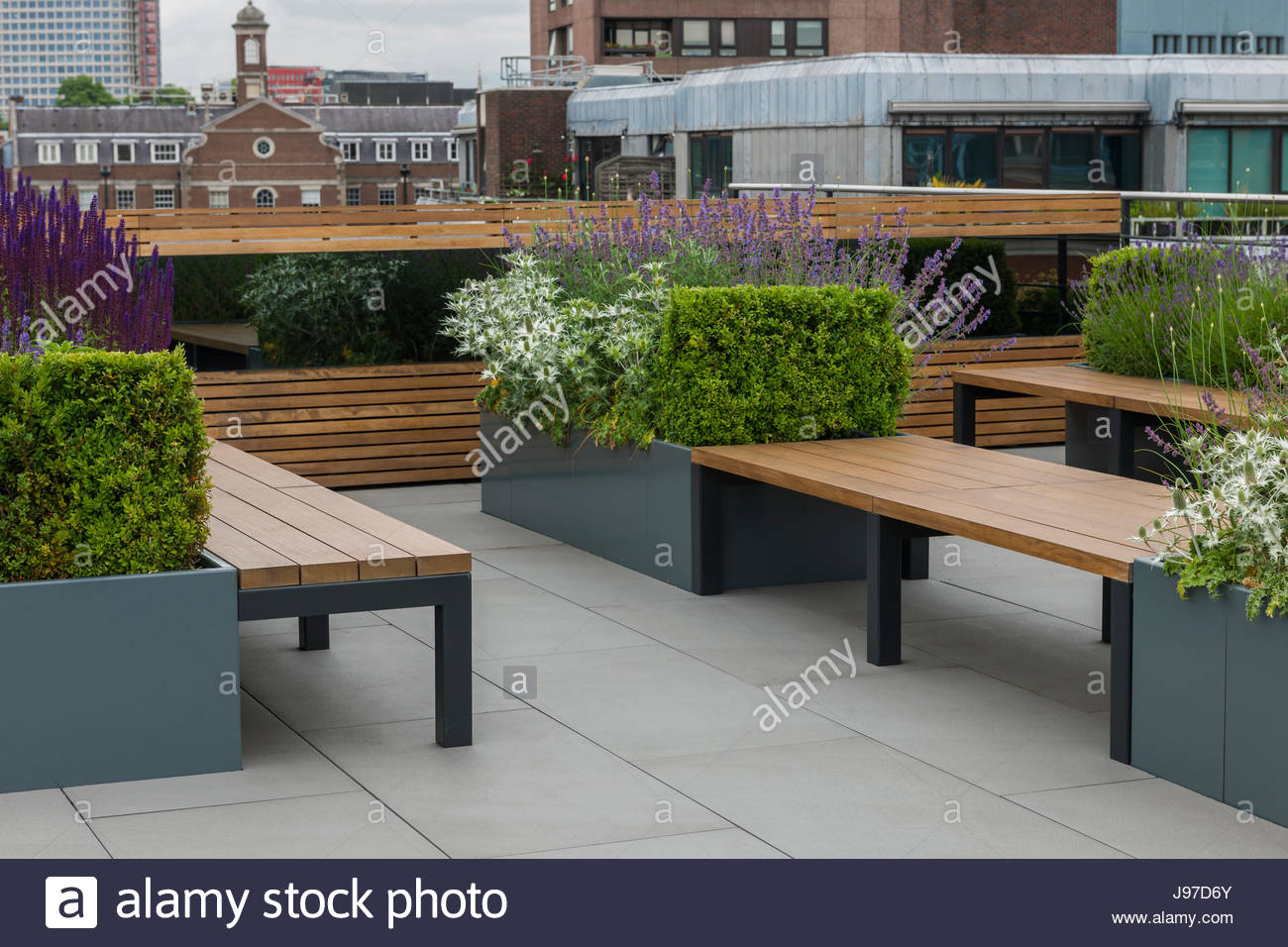Contemporary roof garden by Aralia - Stock Image
