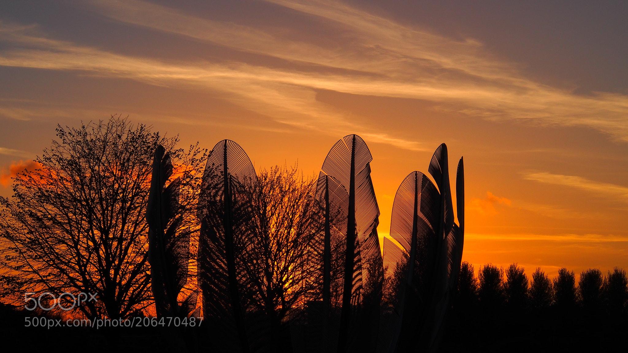 Sunset for Kindred Spirits