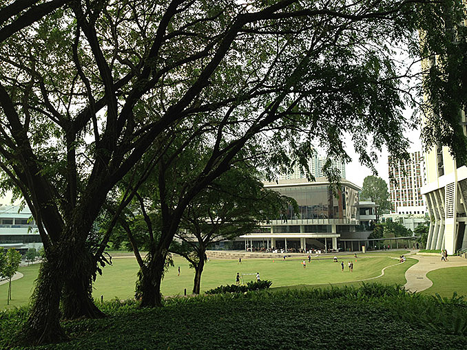 Crafting a timeless campus : Characterisation of SITE through design with the conservation of topography and trees February 24, 2017,AEDT