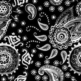 Deconstructed Paisley 2DPY
