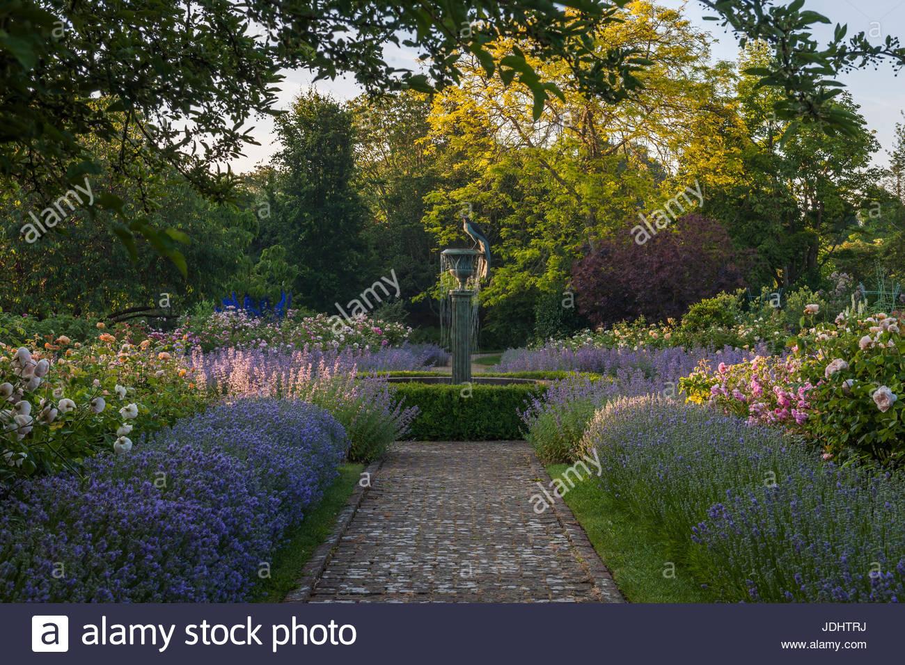 formal rose garden at Borde Hill - Stock Image